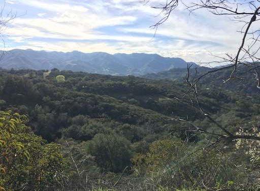 Topanga State Park – Hiking: Reisen heißt auch, bei sich selbst anzukommen.